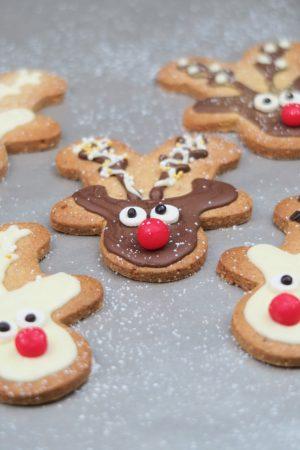 Sablés rennes de Noël aux épices et zestes d'agrumes. Délicieux et trop mignons !